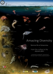 Amazing Diversity. Marine life of Antarctica - From the surface to the abyssal plain.