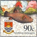 Arothron meleagris