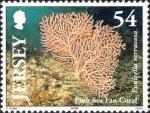 Eunicella verrucosa