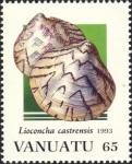 Lioconcha castrensis