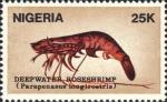 Parapenaeus longirostris
