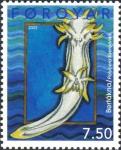 Polycera faeroensis