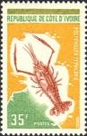 Polycheles typhlops