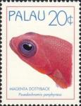 Pseudochromis porphyreus