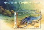Pseudoscaphirhynchus kaufmanni