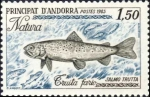 Salmo trutta