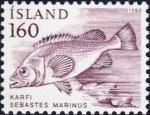 Sebastes marinus