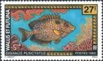 Siganus punctatus