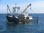 VLIZ website: Fisheries and aquaculture: Fisheries