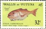 Etelis carbunculus