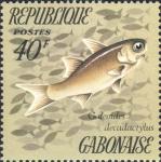 Galeoides decadactylus
