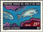 Gaterin gaterinus