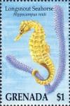 Syngnathiformes