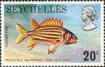 Holocentrus seychellensis