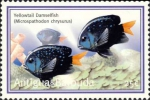 Microspathodon chrysurus