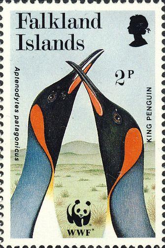 Aptenodytes patagonicus