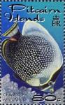Chaetodon reticulatus
