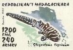Stegostoma tigrinum