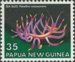 Flabellina macassarana