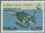 Dermochelys coriacea