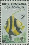 Heniochus sp.