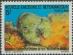 Parribacus caledonicus