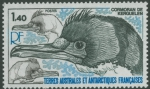 Phalacrocorax verrucosus