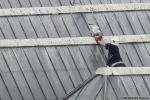 Meeuwen op het dak