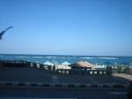 Alexandria 6-8 oct 2010