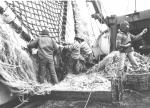 Fishing types