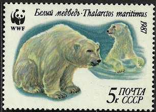 Ursus maritimus