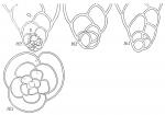 Eggerella scabra
