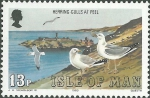 Larus argentatus