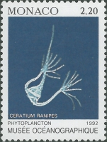 Ceratium ranipes
