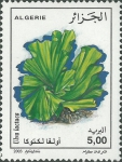 Planten en wieren
