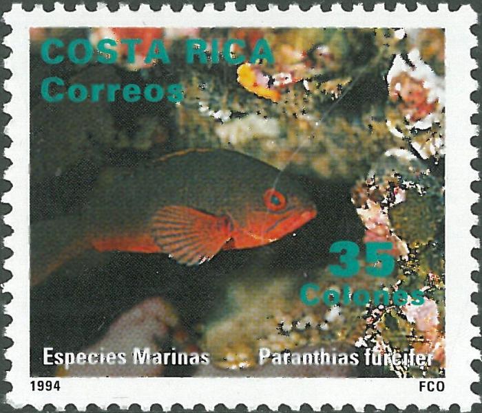 Paranthias furcifer