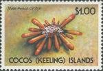 Heterocentrotus mamillatus stamp
