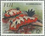 Chromodoris fidelis