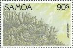 Acropora listeri