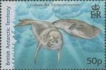 Lobodon carcinophagus