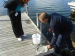 Bioassay Methods in Marine Chemical Ecology