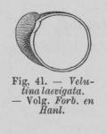 Eben (1884, figuur 41)