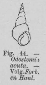 Eben (1884, figuur 44)