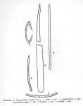 Plocamionida topsenti Burton, 1954