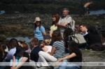 Summer School Porto (19-22 July 2012)