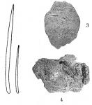 Uritaia halichondroides Burton, 1932