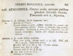 Linnaeus 1758 description of Aphrodita