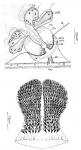 Doliopharynx geminocirro