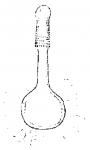 Promonotus hyrcanus