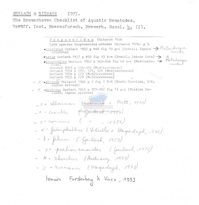 Dasynemoides